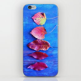 It's a Colorful World iPhone Skin