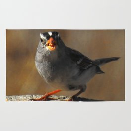 Male White Crowned Sparrow Rug