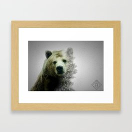 Pacific Grizzly Framed Art Print