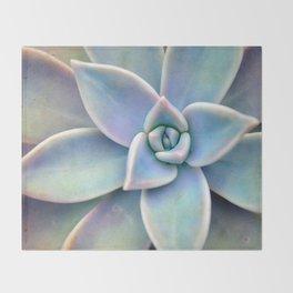 Pastel Succulent Throw Blanket
