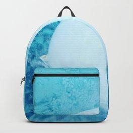 FUNNY POOL  II Backpack
