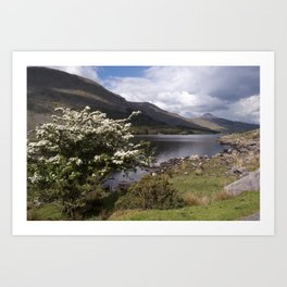 Peaceful afternoon in the Black Valley Art Print