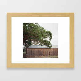 Taking the quiet road  Framed Art Print