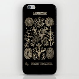 """Lichenes"" from ""Art Forms of Nature"" by Ernst Haeckel iPhone Skin"
