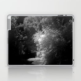 contrasts of nature Laptop & iPad Skin