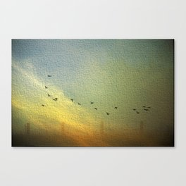 flight and fences Canvas Print