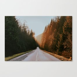 Golden Ears Canvas Print