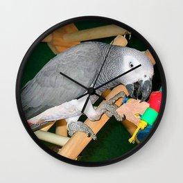Doobie the parrot Wall Clock