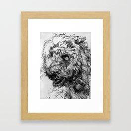 Toby Framed Art Print