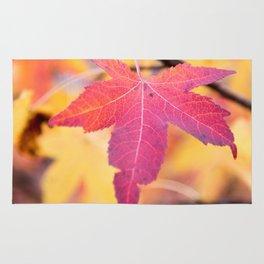 Autumn Still Rug