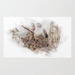 Pigeons cuddling Rug
