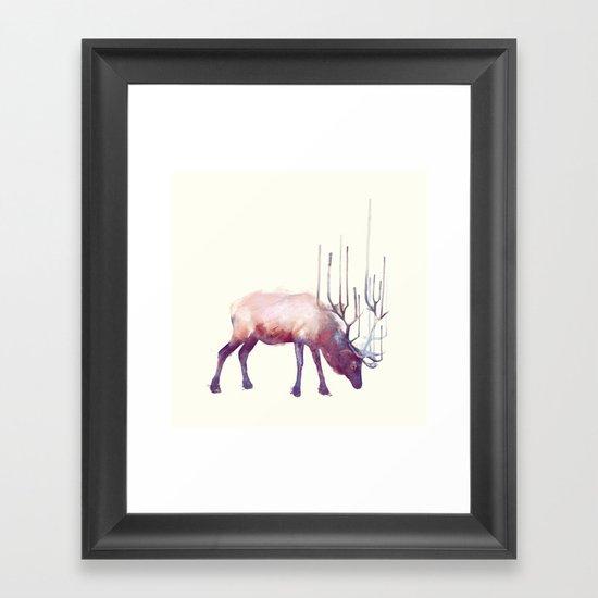 Elk // Solitude Framed Art Print