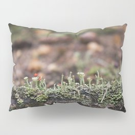 Lichen Forest Pillow Sham