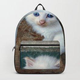White Kitten Backpack