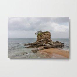 Camel Beach Landscape Metal Print