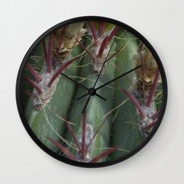 Prickly beauty Wall Clock
