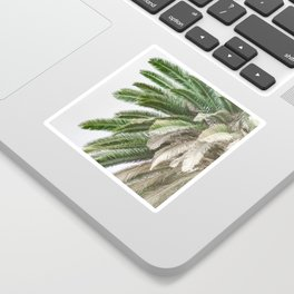 Nature photography tropical vintage palm leaf I Sticker