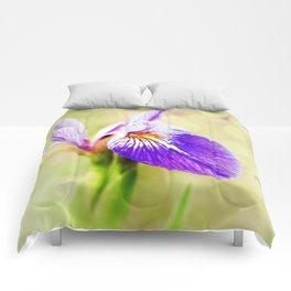 Iris (2) Comforters