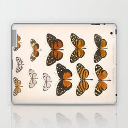 Vintage Scientific Anatomical Insect Butterfly Illustration Vintage Hand Drawn Art Laptop & iPad Skin