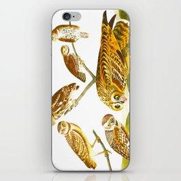 Burrowing Owl Illustration iPhone Skin