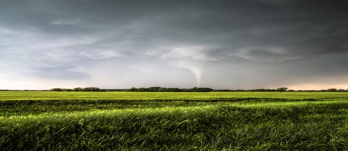 White Tornado - Twister Emerges from Rain Over Field in Kansas Coffee Mug