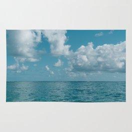Hawaii Water VIII Rug