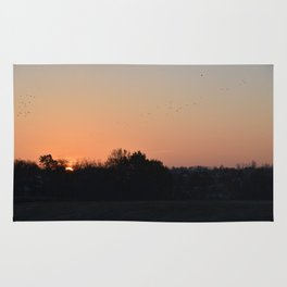 Flocks at Sunrise Rug