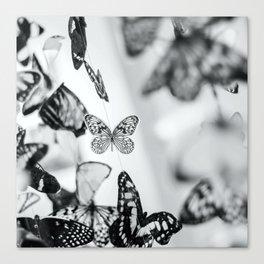 B&W Butterfly Canvas Print