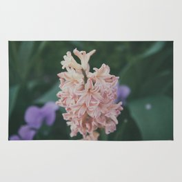 Hyacinthus Rug