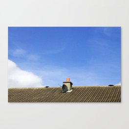 Satellite Canvas Print