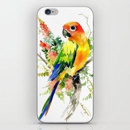 Sun Conure Parakeet iPhone Skin