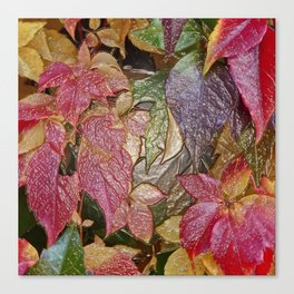 Glossy autumn leaves Canvas Print