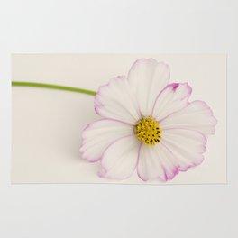 Sensation Cosmos Single Bloom Rug