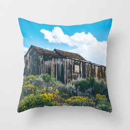 Colorful Day in Bodie Throw Pillow
