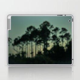 Evening on the Florida Coast Laptop & iPad Skin