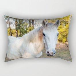 """""""Apache"""" The Worrier Rectangular Pillow"""