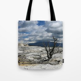 Minerva Spring and Terrace Tote Bag