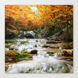 Autumn Forest Waterfall Canvas Print
