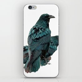 THREE CROWS/RAVENS  SOCIALIZING FROM SOCIETY6 iPhone Skin