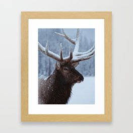 Antlers In Snow Framed Art Print