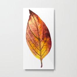 Autumn Leaf 03 Metal Print