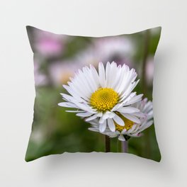 Colourful daisy field close up Throw Pillow