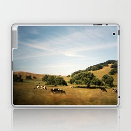 Sonoma cows Laptop & iPad Skin