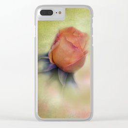 the beauty of a summerday -156- Clear iPhone Case