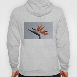 The bird of paradise flower Hoody