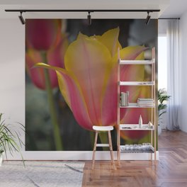 Yellow and Pink Tulip by Teresa Thompson Wall Mural