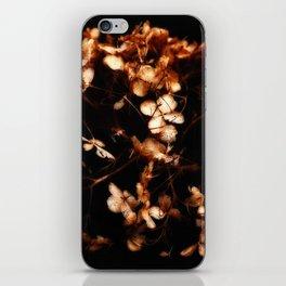 Warm Glow iPhone Skin