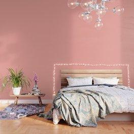 Apricot Blush Wallpaper