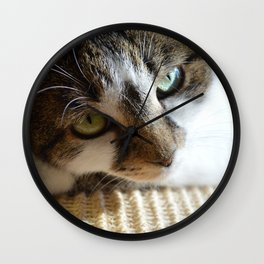 Beautiful Cat Portrait Wall Clock