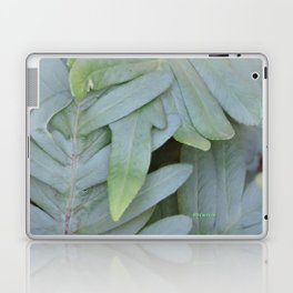 TEXTURES -- Ferns Enfolded Laptop & iPad Skin